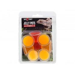 Repti Planet Jelly Pot 8 db bogárzselé csomag