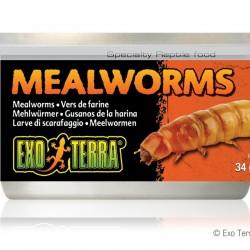 ExoTerra Mealworms lisztkukac konzerv