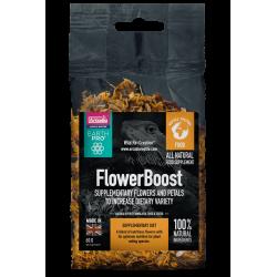 Arcadia EarthPro Flower Boost 40g táplálékkiegészítő növényevő hüllők számára