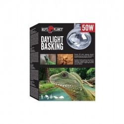 Repti Planet Daylight Basking 50W  melegítő izzó