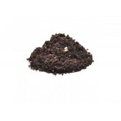 HabiStat Spider Bedding 5 liter talajkeverék madárpókoknak