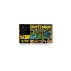 ExoTerra Forest Moss - erdei moha kocka
