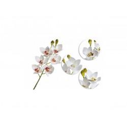 TM-Reptiles Cymbidium orchidea műnövény
