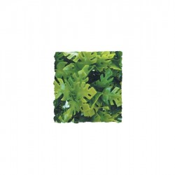 Zoomed Amazonian Phyllo 36 cm műnövény