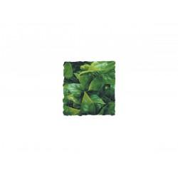 Zoomed Mexican Phyllo 46 cm műnövény