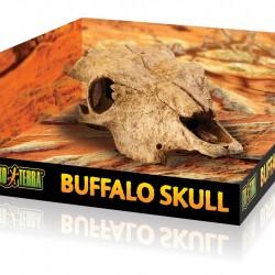 ExoTerra Buffalo Skull bölénykoponya