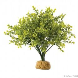 ExoTerra Boxwood Bush műnövény
