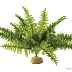 ExoTerra Boston Fern medium műnövény