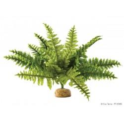 ExoTerra Boston Fern medium műnövény