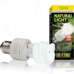 ExoTerra Natural Light 13W kompakt